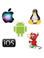 Установка альтернативных операционных систем